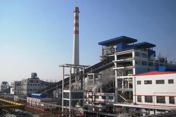 biomass boiler home