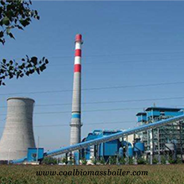 DHM biomass steam boiler