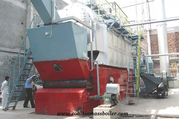 Coal Fired Boiler in Tanzania