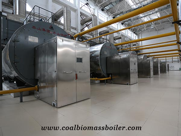 WNS Gas steam Boiler