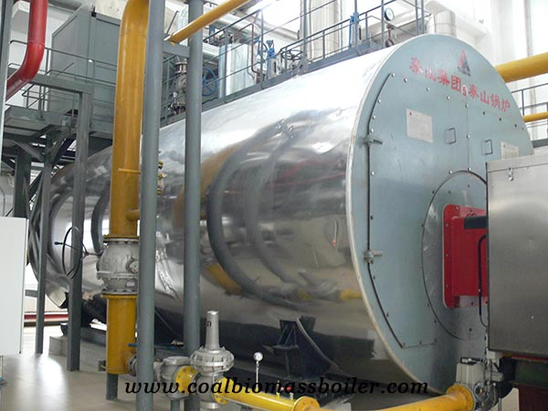 WNS series oil boiler