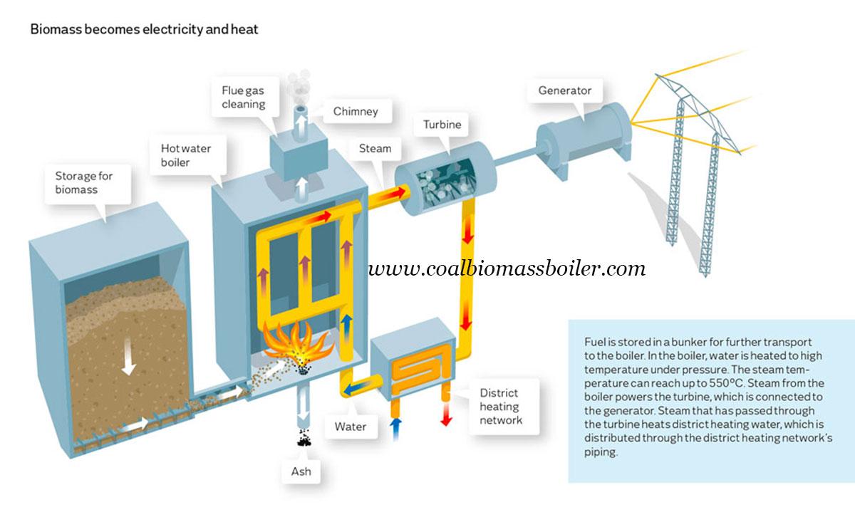 Biomass Power Station Boiler Shown in Ukraine Expo